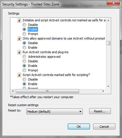 ActiveX Enable Controls