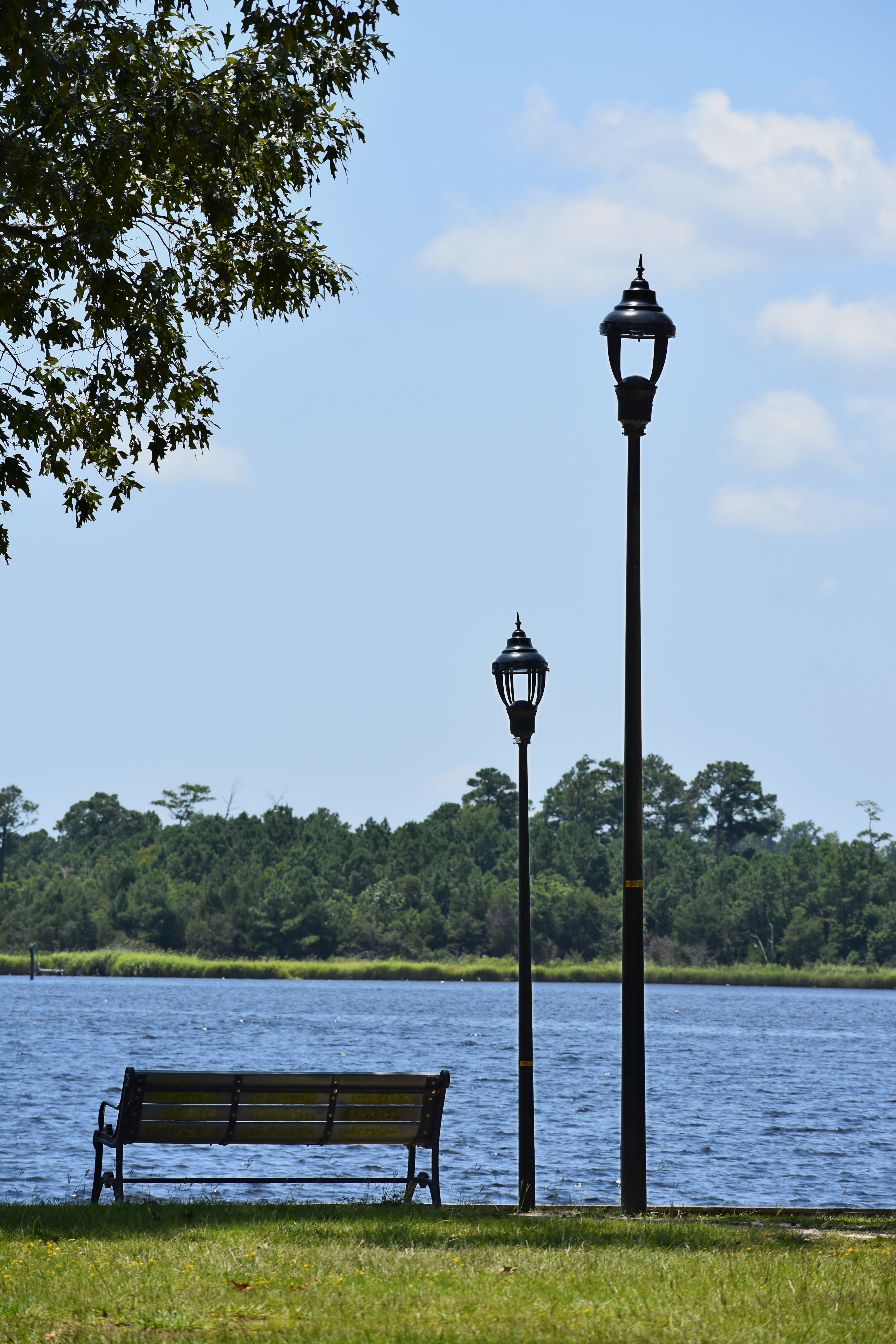 Wilson Bay Park New Light Fixtures